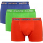 Abisko 3-pack boxer, Blue/Green/Red